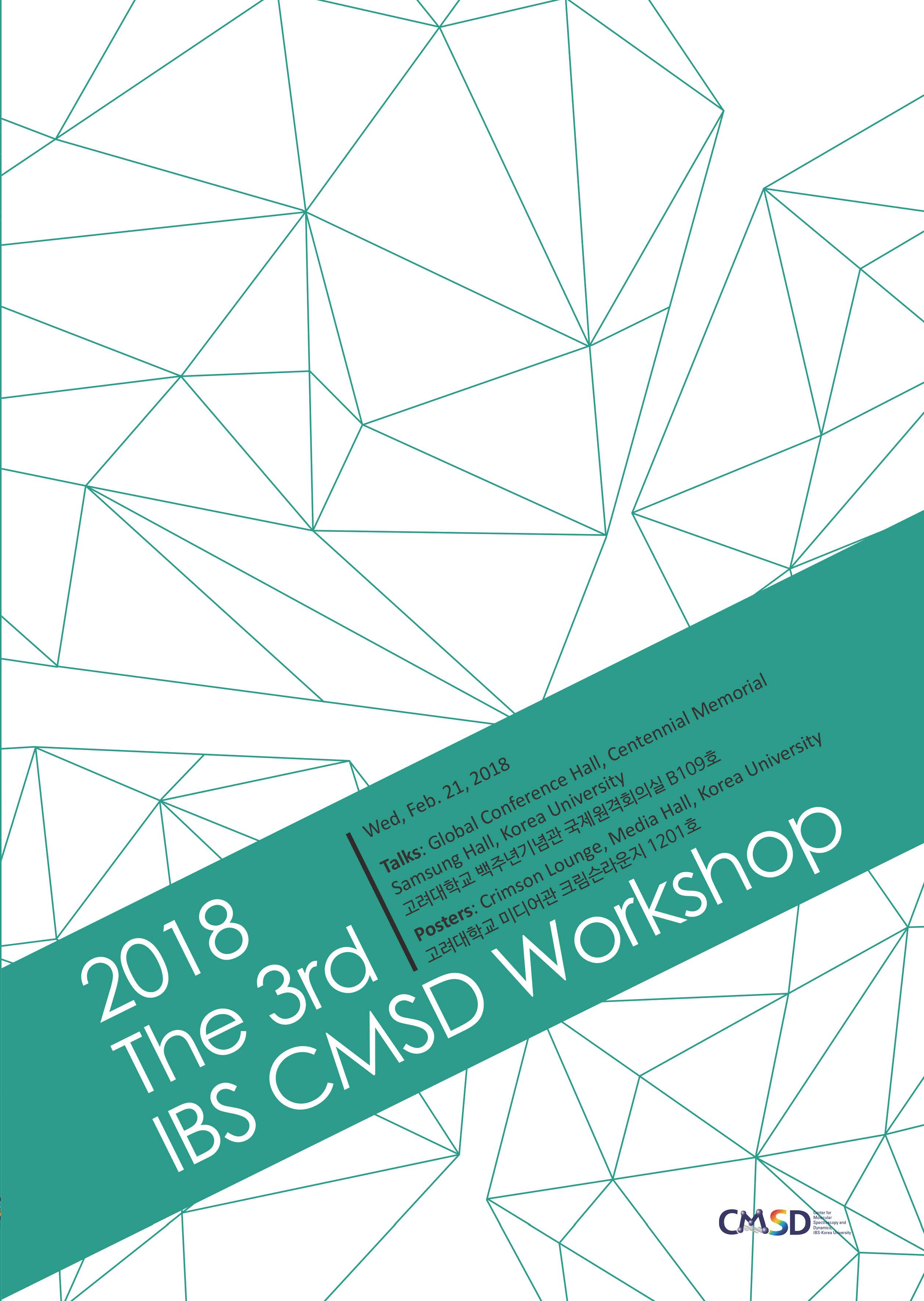 2018 The 3rd IBS CMSD Workshop 사진