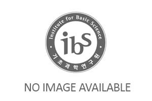IBS-CMSD Colloquium_Prof. Seogjoo Jang(City Uni. of New York)(July 02) 사진